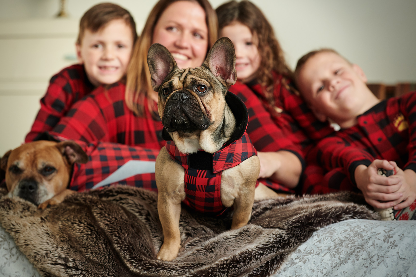 2017-Vancouver-Lifestyle-Photographer-ErichSaide-Advertising-RCPets-Canadian-FrenchBulldog
